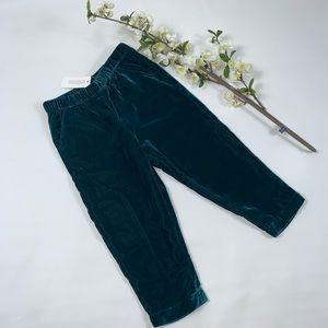Gymboree girls green velvet pants winter pants NWT